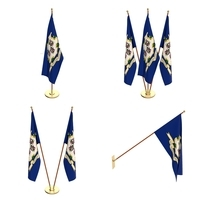 Connecticut Flag Pack 3D Model