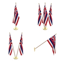 Hawaii Flag Pack 3D Model
