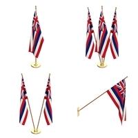 Hawaii Flag Pack 3D Model