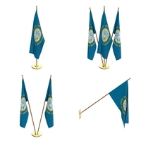 South Dakota Flag Pack 3D Model
