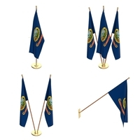 Idaho Flag Pack 3D Model
