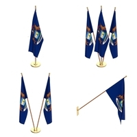 Michigan Flag Pack 3D Model