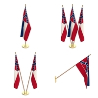 Mississippi Flag Pack 3D Model