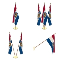 Missouri Flag Pack 3D Model