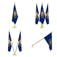 New Hampshire Flag Pack 3D Model