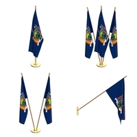 New York Flag Pack 3D Model