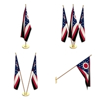 Ohio Flag Pack 3D Model