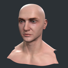Male Head 3D Model