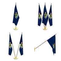 Maine Flag Pack 3D Model