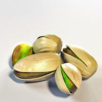 Pistachio 3D Model