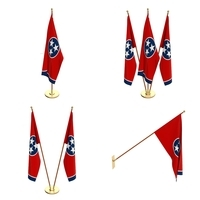 Tennessee Flag Pack 3D Model