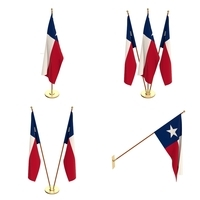 Texas Flag Pack 3D Model