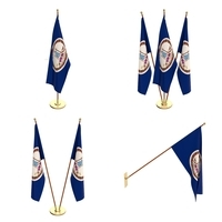 Virginia Flag Pack 3D Model