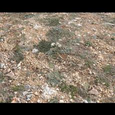 Ground terrain PBR pack 1