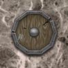 00 03 21 976 shield02 4