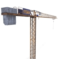 Low Poly Tower Crane Weathered 3D Model