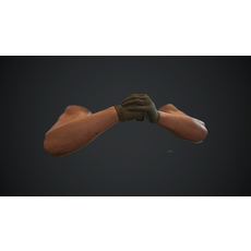 Animated FPS Hands v3.0 3D Model