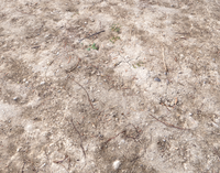 Arid Wasteland ground PBR Pack 1