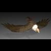 01 08 28 816 vulture4k2k4 4