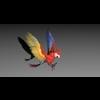 06 12 50 484 parrot2020 4