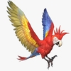 Parrot Animated 3D Model