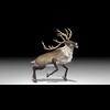 20 55 03 280 reindeer4k2k4 4