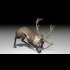20 55 03 509 reindeer4k2k1 4