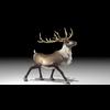 20 55 05 598 reindeer4k2k2 4