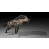 22 18 22 397 hyena4k2k2 4