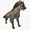 Hyena Animated 3D Model