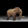 18 58 18 194 elephant4kby2k1 4