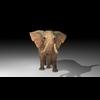 18 58 18 528 elephant4kby2k3 4
