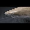 06 08 41 826 car studio lemon shark v10 cell0003 4