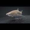 06 08 42 227 car studio lemon shark v10 cell0001 4