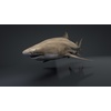 06 08 43 148 car studio lemon shark v10 1 0001 4