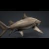 06 08 44 83 car studio lemon shark v10 1 0004 4