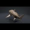 06 08 44 854 car studio lemon shark v10 1 0005 4