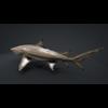 06 08 45 137 car studio lemon shark v10 1 0010 4