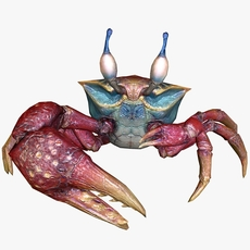 Sea Crab Animated 3D Model