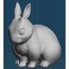 15 15 55 553 rabbit01 4