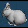 15 16 03 629 rabbit02 4