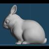 15 16 08 747 rabbit03 4