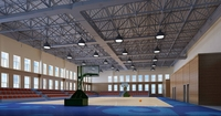Basketball Gym 005 3D Model
