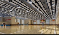 Basketball Gym 008 3D Model