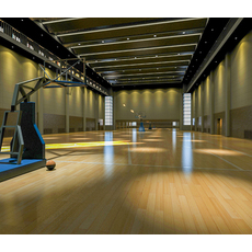 Basketball Gym 017 3D Model
