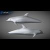 17 01 12 945 dolphin 18 4