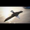 10 07 40 392 seagull unity 13 4