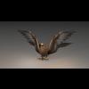 16 45 36 413 eagle2020 4