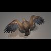 16 45 45 491 eagle2022 4