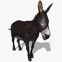 3D Donkey Animated 3D Model